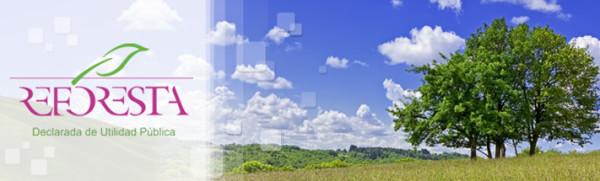 Clarins y la asociación Reforesta