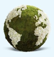 moss_Globe