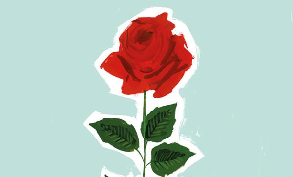 ¡A por las 10.000 rosas solidarias de  Jordi Labanda para Ayuda en Acción!