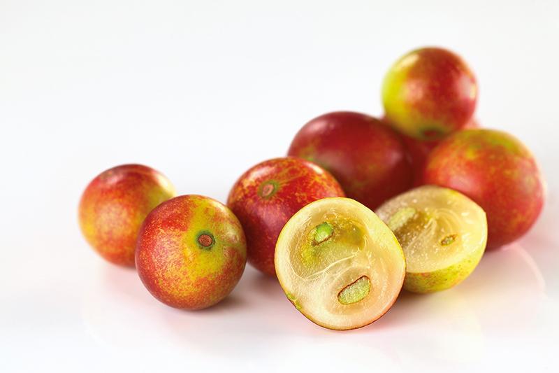 Fruto-camu-camu