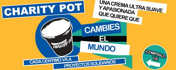 charity-pot-peq