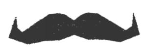 Bigote de Movember