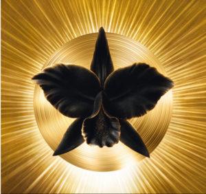 Guerlain La Cure Orchidée Impériale Black