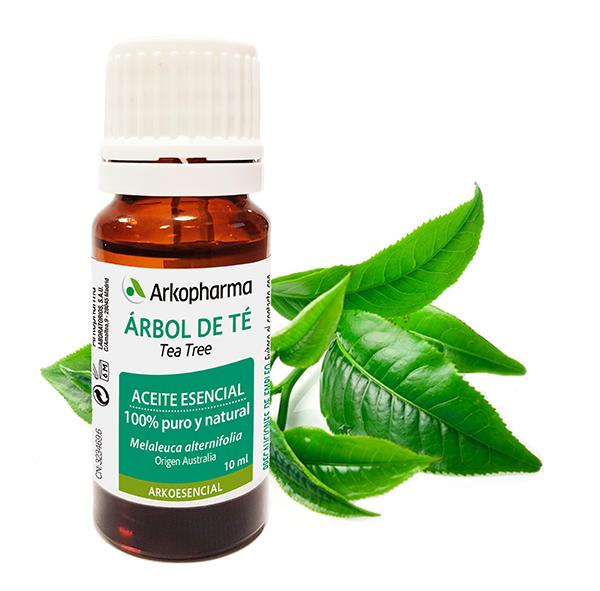Aceite De árbol De Té Y Sus Propiedades Como Desinfectante